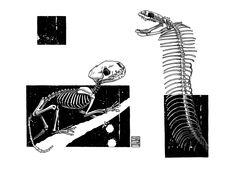 "Limited edition (10) token of Skeenee´s ""Mongoose & Cobra Skeletons"" available on www.makersplace.com. #cryptoArt #skeenee #cryptoartist #skull #skullart Sumi Ink, Anatomy Drawing, Ink Painting, Skull Art, Skeletons, Digital Art, My Arts"