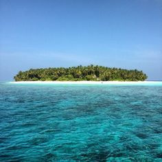 """This is Maldives on Twitter: """"#aaaVeee @aaaVeeeMaldives ☀️🌴 https://t.co/38FCmqCEKH"""""""