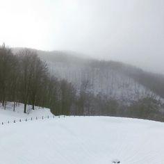 #snow #cimonesci #cimone #emiliaromagna #sestola #passodellupo #igersemiliaromagna #igersitalia
