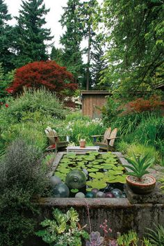 "A Northwest Garden ""✮✮Feel free to share on Pinterest"" ♥ღ www.organicgardenandhomes.com"