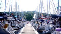 Yacht Week Survival Guide, how to book & what to expect... Would love to do one day!
