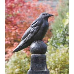Channel Edgar Allan Poe with the Campania International Raven Cast Stone Garden Statue . This raven statue will perch over your garden or outdoor space. Stone Garden Statues, Outdoor Statues, Garden Fountains, Garden Stones, Bird Statues, Garden Statues For Sale, Greek Statues, Rabe, Cast Stone