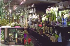 Ovando flower boutique in NY