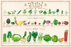 calendrier des fruits & légumes de Juillet