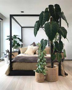 Home Bedroom, Bedroom Decor, Farmhouse Master Bedroom, Master Bedroom Makeover, Bedroom Apartment, Bedroom Wall, Bedroom Ideas, Interior Styling, Interior Design