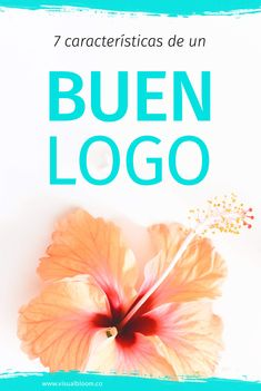 El logotipo es una parte fundamental de la identidad visual de una marca. ¿Pero sabes qué hace un buen logo? Aquí te explico siete características que debe tener un logotipo bien diseñado.