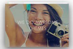 25 Best Full Screen WordPress Themes 2017