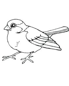 sparrow coloring page printable bird coloring pages coloring me jack sparrow printable coloring pages