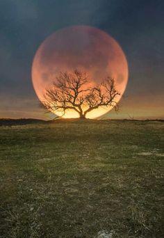 Sun Moon, Night Skies, Arctic, Astronomy, Moonlight, Planets, Sky, Outdoor, Decoupage