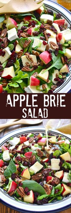 This Apple Brie Salad combines the crispness of apples with the creaminess of Br. This Apple Brie Salad combines the crispness of apples with the creaminess of Brie cheese in a delicious salad that& perfect for winter! Vegetarian Recipes, Cooking Recipes, Healthy Recipes, Vegetarian Steak, Apple Recipes, Vegetarian Options, Keto Recipes, Healthy Salads, Healthy Eating