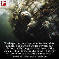 The great creatures of the sea - quote by Jaques Cousteau