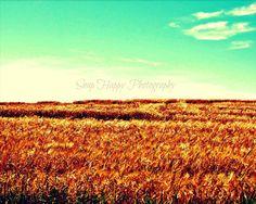 Prairies  8x10 Photo  Alberta Prairies  Landscape by Snaphappy72, $15.00