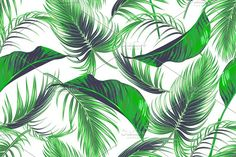 Tropical palm leaves vector pattern by Tropicana on @creativemarket