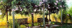 Pérgola para jardins - Como fazer uma pérgola para criar sombra no seu jardim Atualmente, existem pérgolas para todos os gostos e feitios e a sua utilização num jardim pode constituir-se como uma excelente alternativa de decoração. Saiba como fazer uma pérgola para as trepadeiras do seu jardim e rentabilize ao máximo ... - http://repelentenatural.com/ecoblog/2017/05/26/pergola-para-jardins/