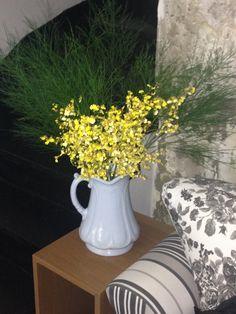 Orquídea Chuva de Ouro (uma lindeza), reza a lenda que traz prosperidade - By Mariana Luccisano para Studio Conceptus