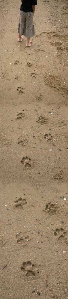 kiko+ ashiato                                                  Cool to wear them on the beach! Make animal foot prints on the sand!  http://www.kiko-kids.com/product/ashiato/details_en.html
