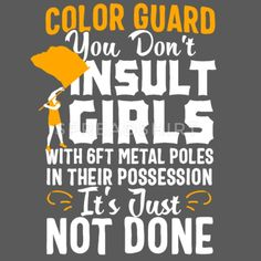 Color Guard shirt Don't Insult Girls With Pole Women's Tri-Blend V-Neck T-Shirt ✓ Unlimited options to combine colours, sizes & styles ✓ Discover V-Neck T-Shirts by international designers now! Color Guard Funny, Color Guard Tips, Color Guard Quotes, Color Guard Shirts, Colour Guard, Color Guard Flags, Marching Band Problems, Marching Band Humor, Flute Problems