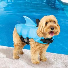 Sea Squirts Shark Fin Doggie Jacket