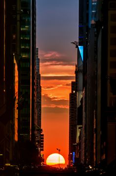 Manhattanhenge: the one and ONLY time it's acceptable for everyone in NYC to stop in the middle of the street. | The 22 Best Things About Living In New York City During The Summer