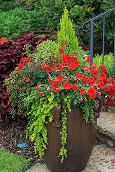 une jardiniere de jardin accueille une plante tombante et un bouquet de fleurs de retombantes