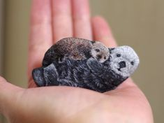 Artist Paints And Transforms Stones Into Realistic Tiny Animals You Can Hold In Your Hand Pebble Painting, Pebble Art, Artist Painting, Stone Painting, Painted Rock Animals, Painted Rocks Kids, Painted Stones, Colorful Animals, Cute Animals