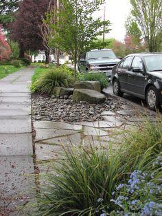 parking strip portlandia style. landscape design by verdant garden nw.