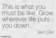 """This is what you must be like. Grow wherever life puts you down."" ― Ben Okri"