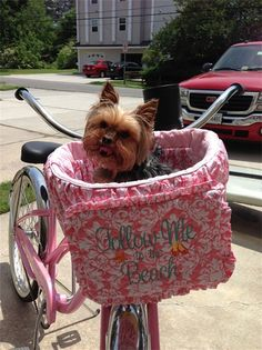 Bicycle Basket Liner for  Dogs  Pets  Includes Embroidered Personalization by rendachs on Etsy, $69.00