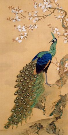Detail. Peacock and Cherry Blossom. Maruyama Okyo. Hanging scroll.