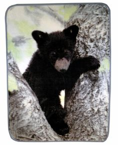 Bear cub lap throw