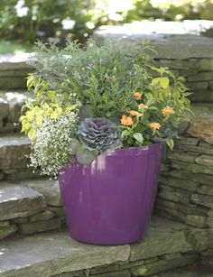 Easy Roller Self-Watering Pot, Large