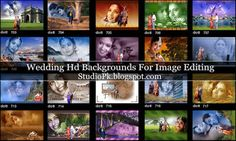 Wedding Hd Backgrounds For Image Editing