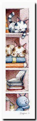 "Virginie Cachau ""Chats bibliothèque"""