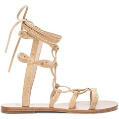RAYE Sage Sandal ($100) ❤ liked on Polyvore featuring shoes, sandals, studded flat sandals, laced up flat sandals, flat gladiator sandals, gladiator shoes and lace up flat sandals