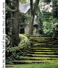 Love grassy stairways, but dont' live in a place where I could pull this off. I can dream.