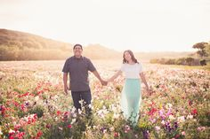 cute picnic in a wildflower field engagement photoshoot by kelsea holder photography