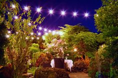 Dining at Capische at Hotel Wailea, Relais & Chateaux