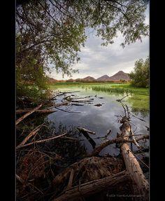 Eden Hot Springs, San Jacinto Wildlife Area, Riverside, California by TomGrubbe San Jacinto, Hot Springs, Pond, Highlights, Wildlife, California, River, History, City