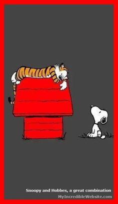 Snoopy and Woodstock Shadow Box - Halloween Wallpaper Snoopy Pictures, Funny Pictures, Cat Love Quotes, Book Quotes, Calvin And Hobbes Comics, Snoopy Comics, Calvin And Hobbes Wallpaper, Calvin And Hobbes Quotes, Snoopy Quotes