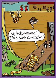 1116 best christian humor images on bible humor christian and church humor