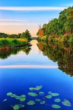http://steveborsuk0.blogspot.in/