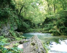 Missouri's natural resources are a sight to behold, especially the plethora of springs that abound throughout the state. Here are eight beautiful springs that are worth a drive to visit. When you're ready for a road trip, pick one (or a few) to tackle.