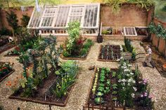 Tidy Vegetable Patch