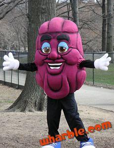 california raisins mascot - California Raisin Halloween Costume