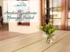 Luxury Franschhoek Guest House Accommodation - Mont d'Or B&B Spa Treatments, Free Wifi, Events, News, Luxury