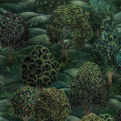 Purchase Cole & Son Wallpaper SKU# Collection Botanical Botanica pattern name Forest color name Forest Greens. Theme Print enjoy this impressive wallpaper. Cole And Son Wallpaper, Green Wallpaper, Print Wallpaper, Scenic Wallpaper, Paisley Wallpaper, Bathroom Wallpaper, Wallpaper Ideas, Folklore, Cole Son