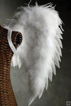 White Deluxe Angel Wings 33 x 22  Designed by the people who make the Victoria Secret Angel Wings!