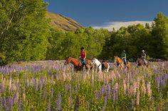 Mike Langford Publications Tourism, Public, Mountains, Nature, Travel, Naturaleza, Trips, Viajes, Traveling
