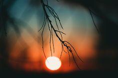 Light Bulb, Celestial, Lighting, Nature, Landscapes, Outdoor, Colors, Home Decor, Sun
