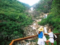 Jourama Falls Track is a grade 2 Return hike located in Paluma Range National Park Queensland. The hike should take approximately to complete. Hiking Trails, Grade 2, National Parks, Track, Australia, Adventure, Fall, Range, Autumn